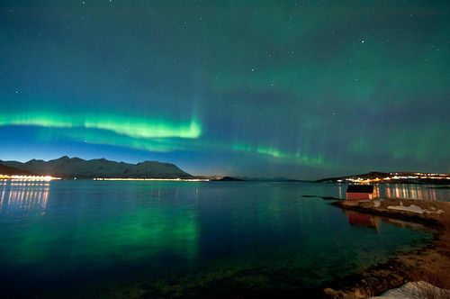 Nordlys over Grytøya
