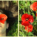 Poppy Diptych by annabelletexter