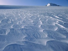 tundra(0.0), piste(0.0), ocean(0.0), wind wave(0.0), iceberg(0.0), ice cap(1.0), polar ice cap(1.0), ice(1.0), natural environment(1.0), sea ice(1.0),