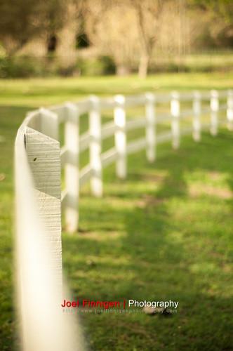 park light shadow field grass fence outdoor barrier shallow depth picket