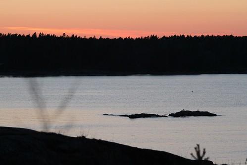 evening spring boviken