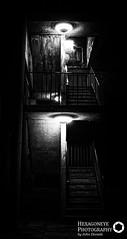 117/365 Stairway Noir