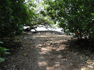 End of the trail, Kealakekua Bay, Hawaii