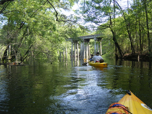 ga georgia unitedstates kayaking paddling rincon lcu ebenezercreek lowcountryunfiltered