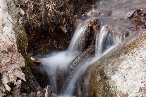 home brooks bartonmountain