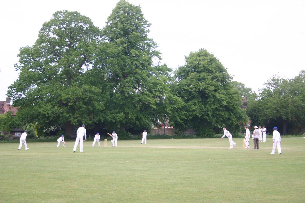 Pluckley Cricket