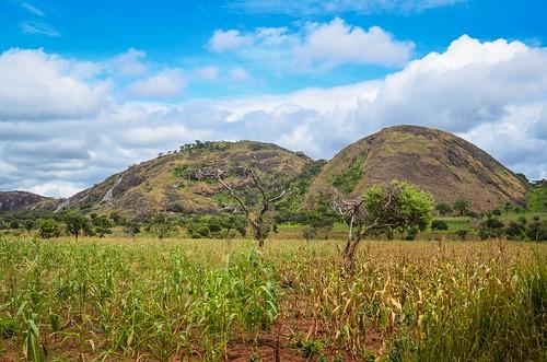 Montagnes rondes près de Bocoio