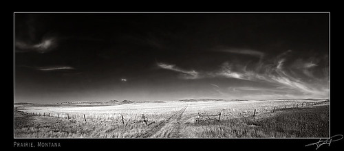 ... Montana Panorama
