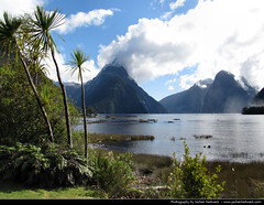 New Zealand 2011