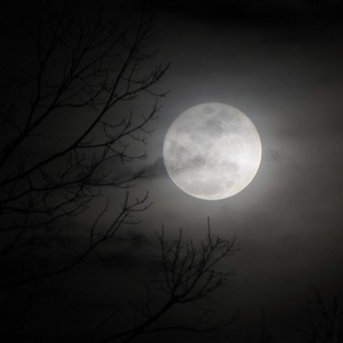 moon mond northcarolina luna fullmoon blueridgeparkway westernnorthcarolina southernappalachians ccbyncsa perigeemoon canonpowershotsx10is danielboonestrace
