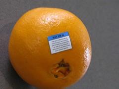 clementine, orange, citrus, orange, valencia orange, yellow, fruit, food, tangelo, bitter orange, tangerine, mandarin orange,