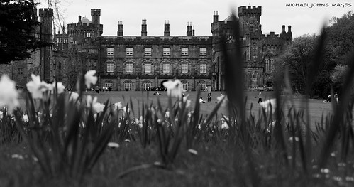 life camera trees ireland light sky people bw playing flower building tree tower castle art classic love nature grass stone canon children landscape view photos bokeh candid picture best explore journey observe land