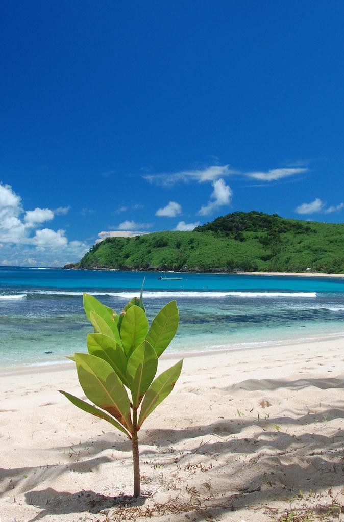 yasawa fiji beach