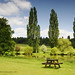 A Nice Spot For a Picnic by MICHAEL J ROFF PHOTOGRAPHY
