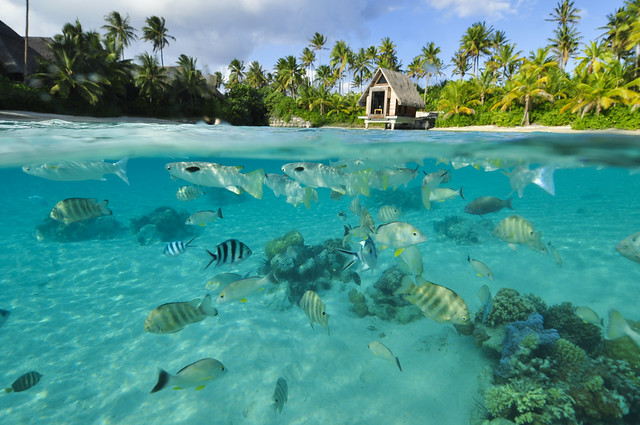 Lagoon and chapel at InterContinental Bora Bora  Resort & Thalasso Spa