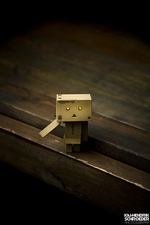 Danbo and wood