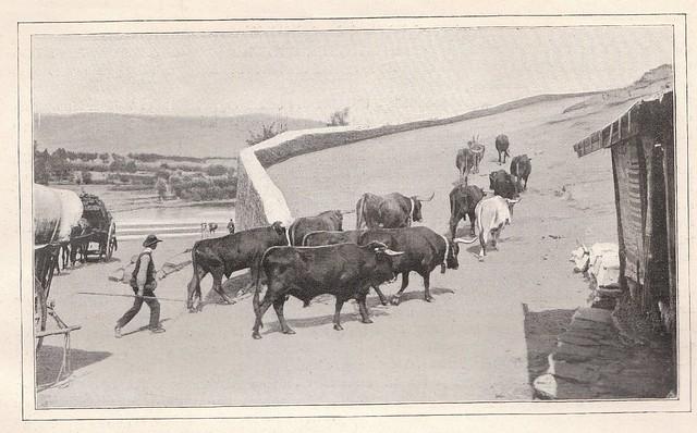 Subida al Castillo de San Servando junto al actual Restaurante la Cubana junto al Puente de Alcántara. Publicada en De Tolède a Grenade por Jane Dieulafoy  para Le Tour du Monde en 1905