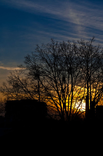 sunset sky evening bright shilouette