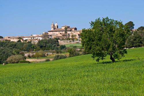 Pina (Mallorca)