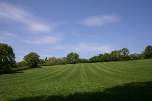 Sweeping grass