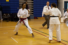 hapkido, individual sports, contact sport, sports, tang soo do, combat sport, martial arts, karate, japanese martial arts, shorinji kempo,