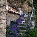 Stairs in Tourtour; Provence France