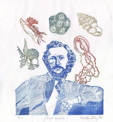 Ernst Haeckel portrait