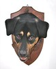 by Giovanni Anselmi