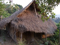 thatching, village, hut, wood, tree, shack, cob, jungle, rural area,