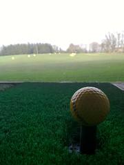 field(0.0), soil(0.0), recreation(0.0), baseball field(0.0), golf club(0.0), net(0.0), sport venue(1.0), grass(1.0), sports(1.0), green(1.0), golf(1.0), golf equipment(1.0), grassland(1.0), ball(1.0),