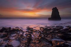 San Francisco Coast by madeintaiwan73