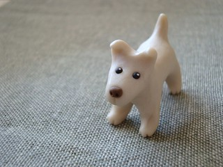 Pearly Terrier