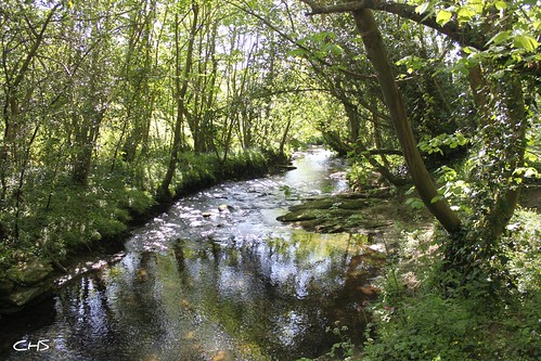The River Allen, near Idless (Truro) by Stocker Images
