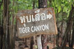 Tigertemple Thailand