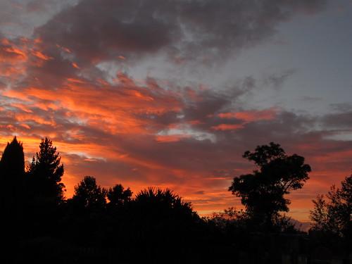 new sunrise zealand gisborne hexton