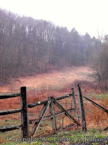 old broken rural wooden spring gate pennsylvania decay farm rustic pa pasture forgotten lehighvalley countryroad springthaw northamptoncounty slatebelt lowermtbetheltownship garrroad