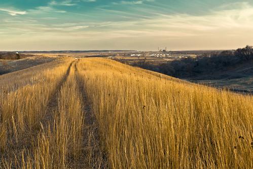 landscape iowa goldenfield prairiegrass councilbluffs prairiepreserve vincentbluff midamericanenergy vincentsbluff
