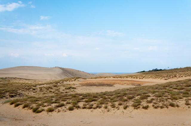 鳥取砂丘 窪地