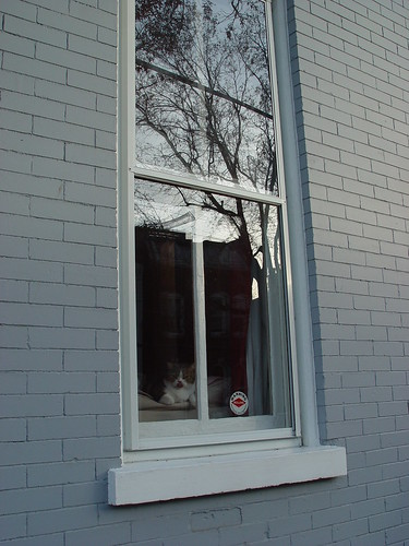 Custom wood storm windows update remember those old - Interior storm windows for old houses ...