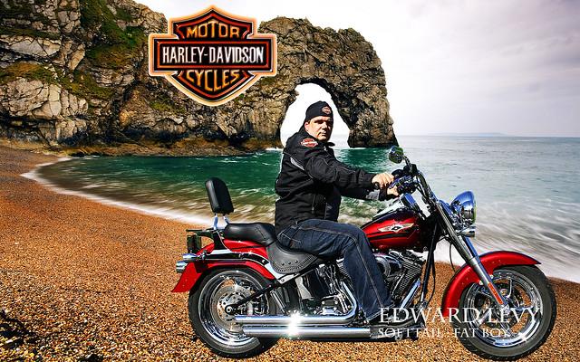 Harley Davidson Soft Tour Pac Lights