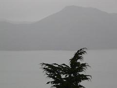 california: marin county