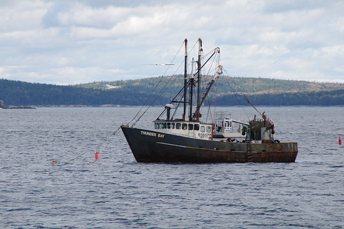 Nova Scotia Lobster Boat