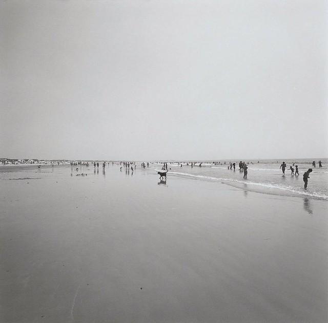 Horseneck Beach, 1974, by Harry Callahan
