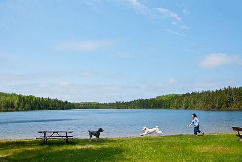 lake ontario canada picnic rosa running tess nina canadapt