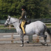 Small photo of Abram Hall Dressage June 2011 (45)