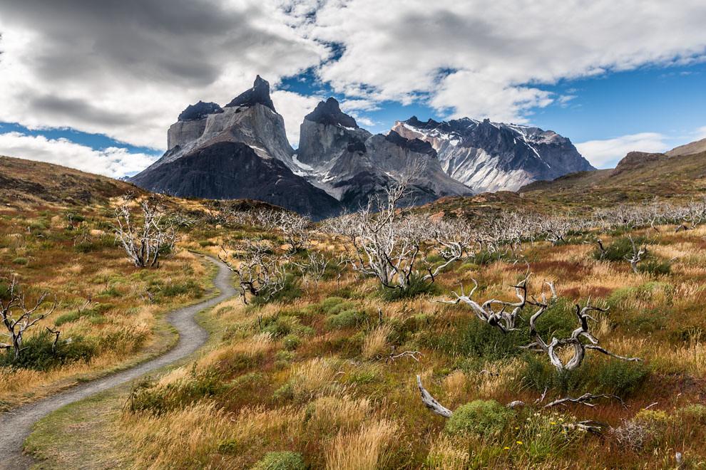 Un sendero conduce a los Cuernos del Paine, una de las alucinantes vistas que ofrece entre sus atractivos el Parque Nacional Torres del Paine, en Chile. (Tetsu Espósito)