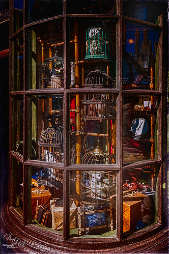 Image of the Owl and Supply Store at Harry Potter Land at Universal Studios Orlando