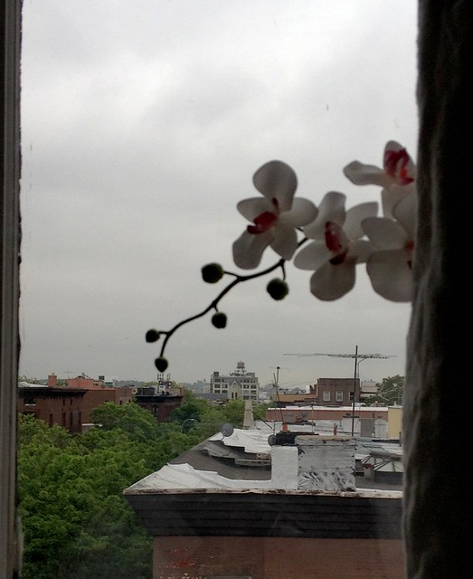 photo-9