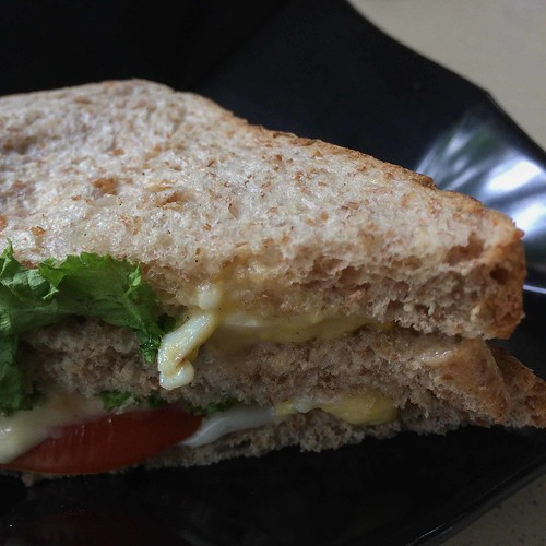 greenzilla_jurong_east_egg_mayo_wholemeal_sandwich