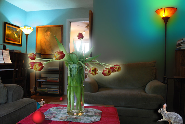 Another Look, Into the Light, Tulips and Living Room with Red Ball, May 16, 2014 9-12 full bpx